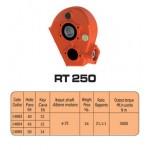 SCATOLE INGRANAGGI  RT250 (RT14883)